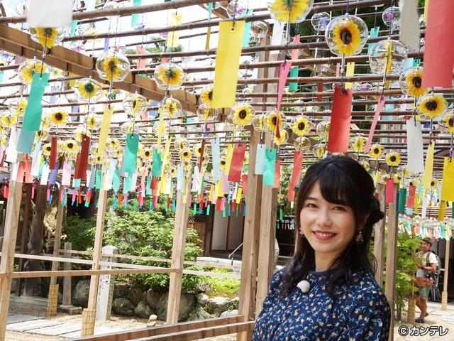 横山由依(AKB48)がはんなり巡る 京都 いろどり日記/第61回 緑あふれる自然に包まれた人気スポット