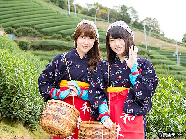 横山由依(AKB48)がはんなり巡る 京都 いろどり日記/第29話 〜ゆいはん&あんにん 秋の京都やましろ2人旅〜