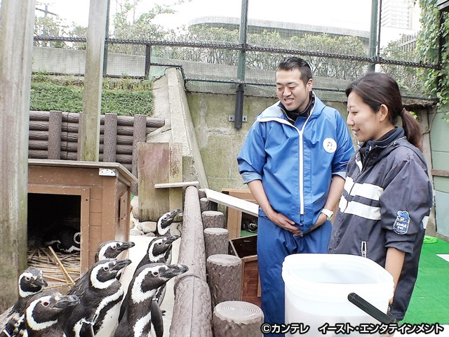セブンルール/#54 水族園で1万3千匹の命を守る獣医師