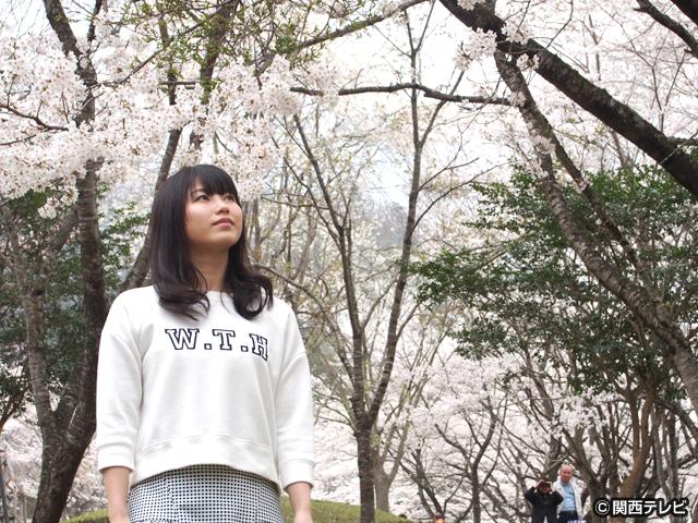横山由依(AKB48)がはんなり巡る 京都 いろどり日記/第10話 桜咲き誇るかやぶきの里