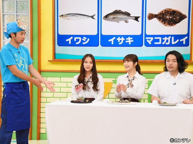 NMBとまなぶくん/#312 知って得する! おいしい魚の魅力