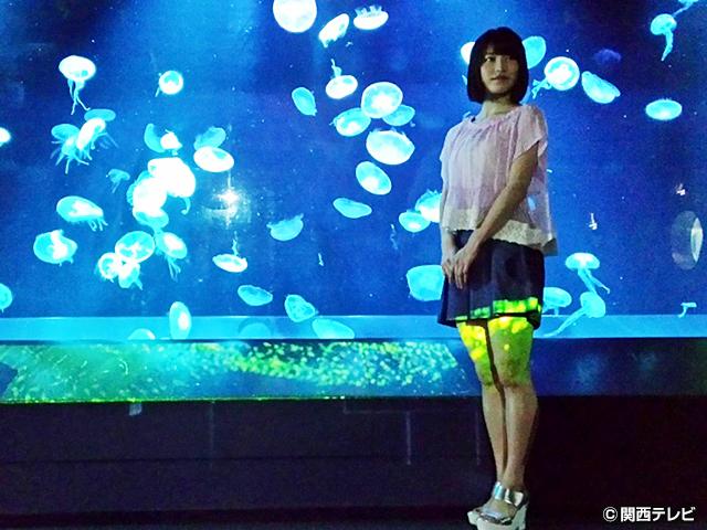 横山由依(AKB48)がはんなり巡る 京都 いろどり日記/第25話 夏の京の涼を探しに