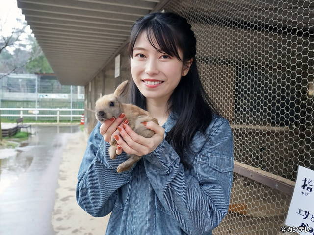 横山由依(AKB48)がはんなり巡る 京都 いろどり日記/【番外編】第81回 光秀が築いた福を知る城下町へ