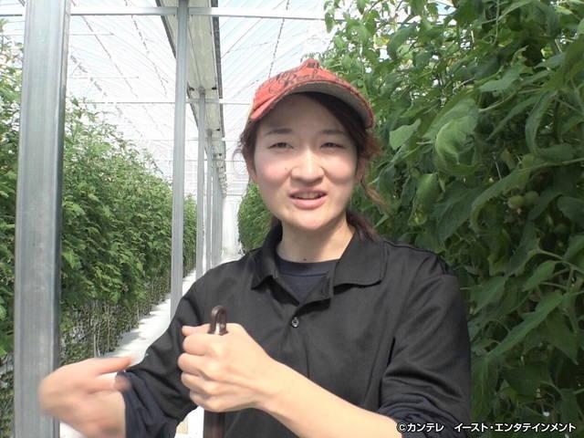 セブンルール/#204 東京の住宅街でトマトを地産地消!未来の都市型農業