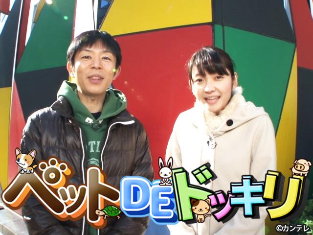 岡安譲 (カンテレアナウンサー)/【会員無料】ペットDEドッキリ
