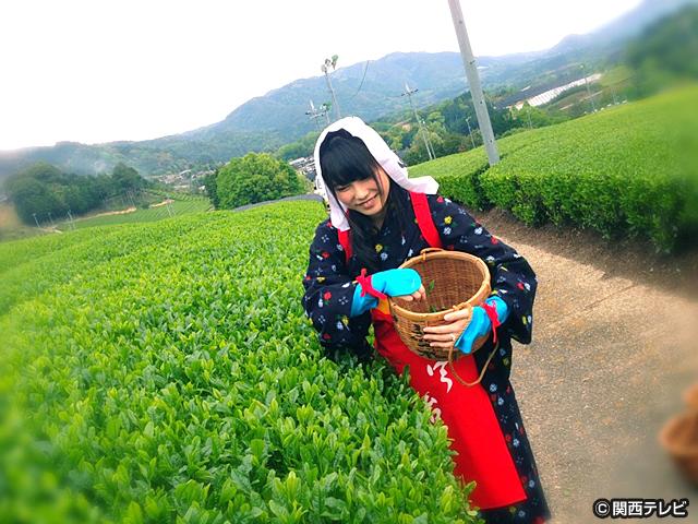 横山由依(AKB48)がはんなり巡る 京都 美の音色 /第11話 お茶の里・宇治から聞こえる音色